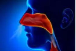 Lancet oncol:卡瑞珠单抗+吉西他滨+顺铂或可成为中国复发/转移性鼻咽癌的新标准一线疗法