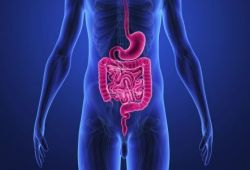 AP&T: 吸烟在功能性消化不良和肠易激综合征发病中的作用