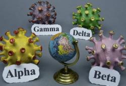 哪些疫苗仍然對 delta 變體有效?