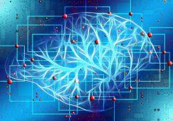 """Alzheimer Dementia:长期睡眠不好,容易变""""傻"""""""