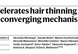 "科学家找到引起脱发的关键<font color=""red"">干细胞</font>机制"