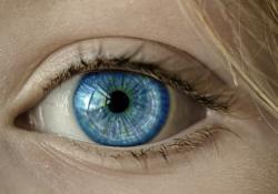 """回声定位:盲人的<font color=""""red"""">眼睛</font>!"""