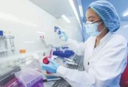 礼进生物在2021 ASCO年会上公布其CD137/4-1BB激动剂抗体LVGN6051的1期临床研究中期结果