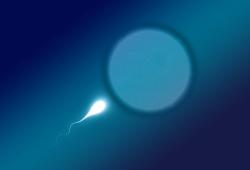 European Urology:不育的已经成为一种流行病了吗?精液微生物组代谢或与不育密切相关