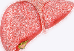"""共识解读:免疫联合靶向方案为我国晚期肝细胞癌<font color=""""red"""">转化</font><font color=""""red"""">治疗</font>开辟新方向!"""