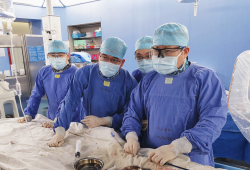 葛均波院士结构团队完成世界首个可穿刺封堵器植入