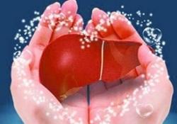 Liver Int:阿司匹林和他汀类药物与慢性乙肝患者的肝癌风险的相关性