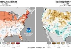 热浪来袭 !最高54℃!美西3000万人面临高温天气