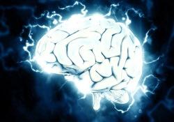 Neurology-阿特金斯饮食治疗胶质瘤,身体有哪些变化?