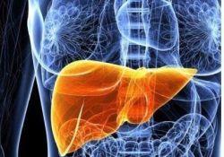 """JGH: Omega-3 脂肪酸乳剂可安全有效地减少急性慢性肝衰竭中的内毒素血<font color=""""red"""">症</font>和<font color=""""red"""">败血</font><font color=""""red"""">症</font>"""