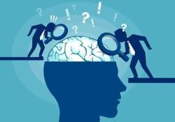 "Neuron:冯国平团队揭示自闭症和精神分裂背后共享<font color=""red"">的</font>致病<font color=""red"">机制</font>"