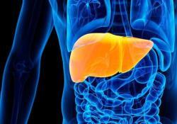 BMCGastroenterology:增强型肝纤维化测试在酒精相关肝病中诊断和预后性能的检测