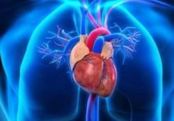 """JACC:可预测先天性心脏病成人患者心脏<font color=""""red"""">手术</font><font color=""""red"""">围</font><font color=""""red"""">手术</font><font color=""""red"""">期</font>死亡风险的评分模型"""