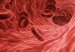 """2021年恶性血液病患者<font color=""""red"""">药物</font><font color=""""red"""">性</font><font color=""""red"""">肝</font><font color=""""red"""">损伤</font>防治共识,3分钟get要点!"""