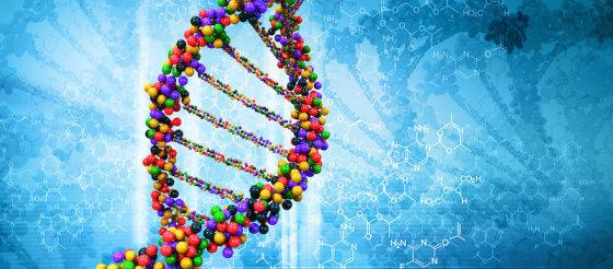 """最新发现""""垃圾DNA""""序列在衰老、癌症中的潜在作用"""