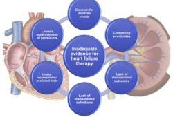 JACC:心力衰竭住院患者的肾脏功能和疗效