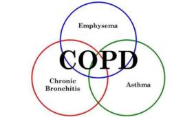 Respirology:营养治疗对COPD患者有利