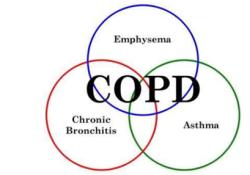 "Respirology:<font color=""red"">营养</font><font color=""red"">治疗</font>对COPD患者有利"