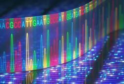 Nat Commun:攜帶該基因突變的男性,患2型糖尿病風險高達30%