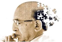 Nat Commun:使用多基因风险评分鉴别阿尔茨海默症高风险个体