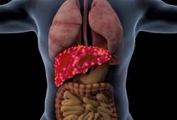 每30秒就有一人死于肝炎!在中國,有7000萬的乙肝感染者...