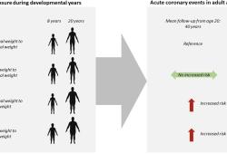Arterioscler Thromb Vasc Biol:青春期超重/肥胖或增加中年急性冠状动脉发生风险