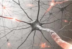 JAMA Neuology:公众需要了解真相,神经系统功能性失调可能与疫苗接种无关