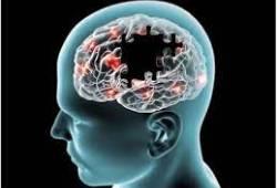 AD患者的脑细胞过度消耗对神经传递至关重要的资源