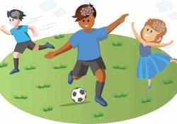 "Cerebral Cortex:定期体育活动与更""健康""的大脑有关"