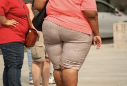 "Science:流的不是汗,是脂肪!細胞因子治療的小鼠通過""出汗""脂肪減輕了體重!"