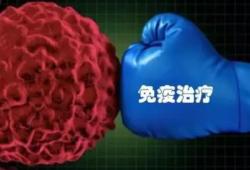 Clin Cancer Res:肿瘤特异性MHC-II可预测乳腺癌从抗PD-1/L1免疫治疗中的获益
