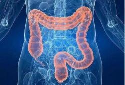 IBD:肠道梗阻和肛周病变的消失预示着克罗恩病患者内窥镜球囊扩张术后需要进行手术治疗