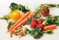 Nutrients:纯素饮食对预防和治疗2型糖尿病有用吗?