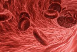 最新!血脂异常基层健康管理规范,强调生活方式全面干预!