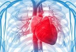 梅斯心血管疾病进展 (007期)