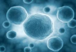 Nat Rev Nephrol:促炎症消退脂质介质有望成为慢性肾病治疗的新药研究靶点