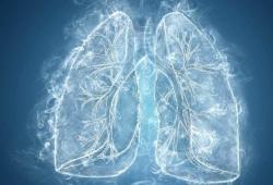 Nat Med:肿瘤浸润淋巴细胞(TIL)治疗:转移性肺癌的潜在治疗策略