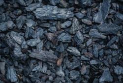 PLOS Med:近50万人群证实,用煤或木头做饭,患白内障等眼疾风险增加