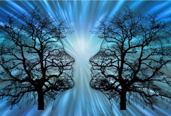 Journal of stroke:機械取栓,全身麻醉和有意識的鎮靜,哪個效果好?