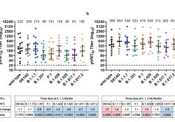 智飞生物发布重组新冠疫苗Ⅲ期临床关键数据:总保护效率82%、Delta保护率78%