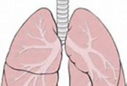 Brit J Cancer:吸烟与乳腺癌风险的关系