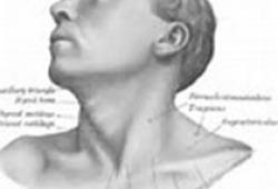 尼妥珠单克隆抗体注射液治疗口腔颌面-头颈部鳞癌专家共识