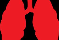 2021 BTOG/APP共识声明:大细胞神经内分泌肺癌