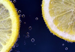 Nutrients:柠檬发酵物可真酸爽!也真能减肥?