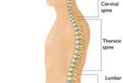 国际中医临床实践指南 退变性腰椎管狭窄症