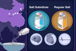 NEJM:盐替代品对心血管事件和死亡的影响