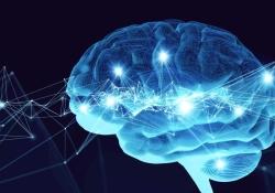 "Alzheimer Dementia:哪些<font color=""red"">血液</font>标记物,可预测痴呆前兆?"
