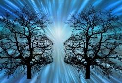 Stroke: 脑卒中前运动障碍, 行血管内治疗,其结局如何?