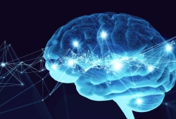 Stroke:慢性病基础,或解释不同种族的脑中风预后差异