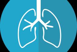 J heart Lung Transplant:间质性肺疾病肺移植中供体-受体大小匹配的简化策略